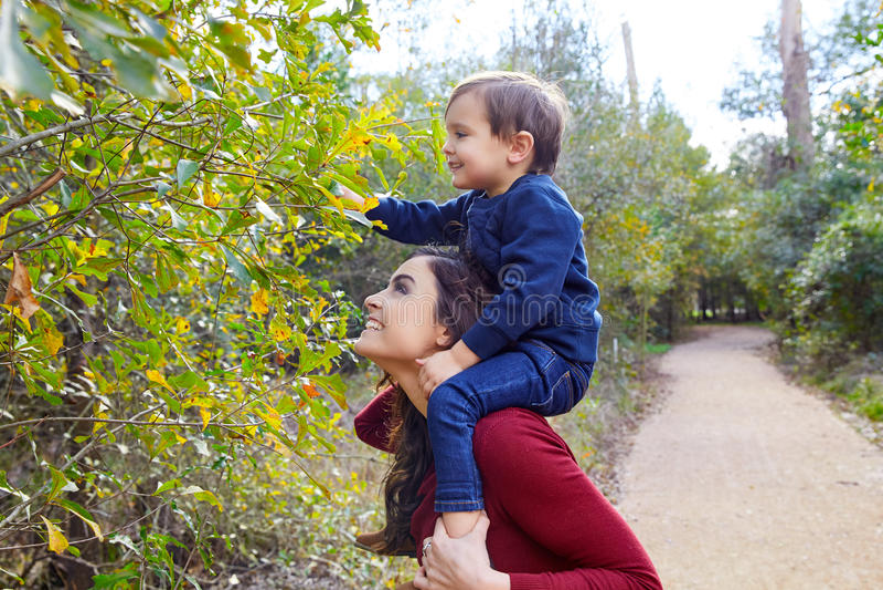 Kid boy sit on mother shoulders picking leave stock image