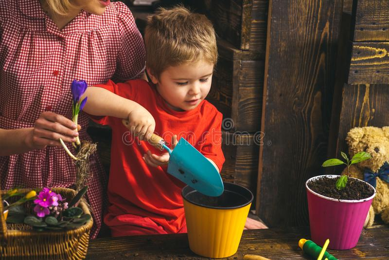 Kid concept. Kid learn planting flower in pot with soil. Little kid potting plants. Adorable kid with gardening tools royalty free stock photos