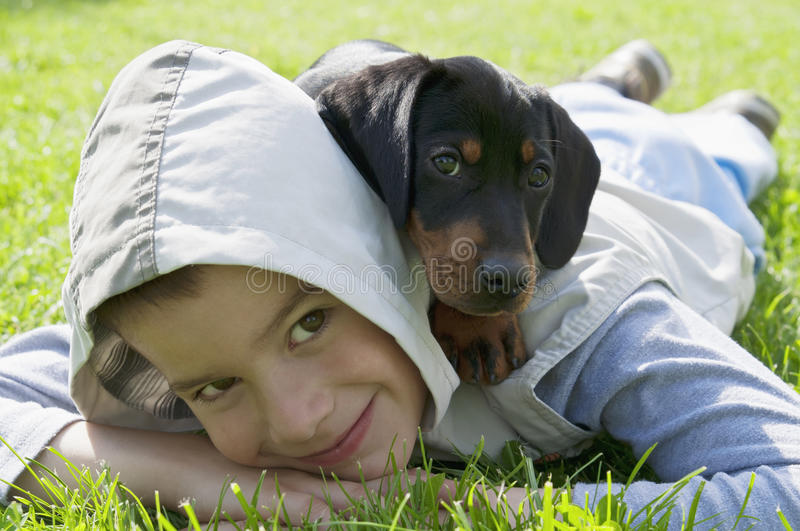 Kid and dachshund puppy stock photography