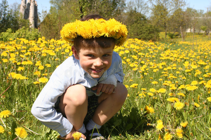 Kid and Dandelions royalty free stock photo