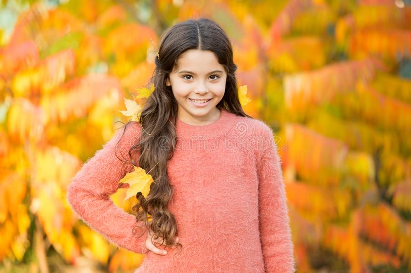Kid enjoy autumn outdoors. Meet autumn. Little girl smiling happy cute child gorgeous long hair maple leaves. Cozy stock photography