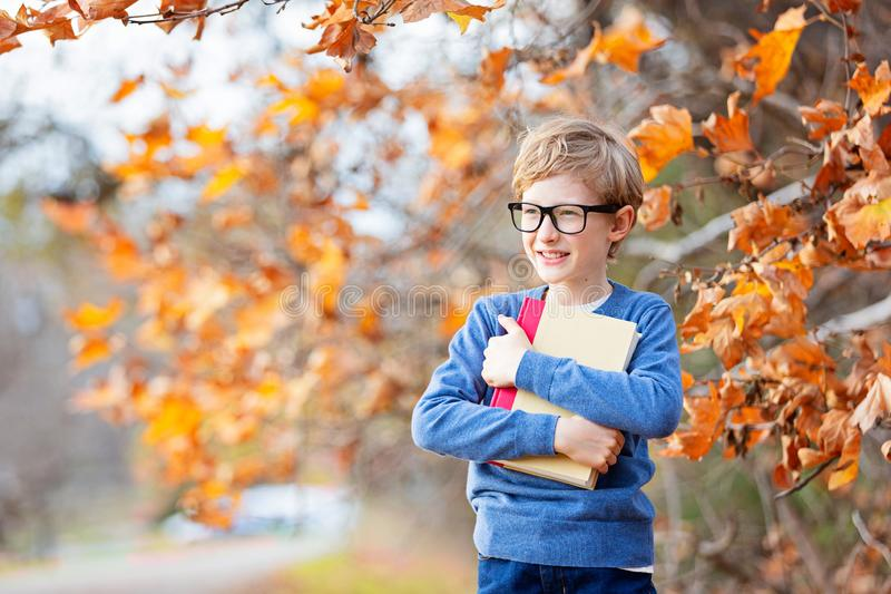 Kid at fall stock photo