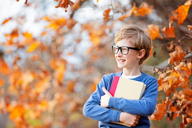Kid at fall stock image