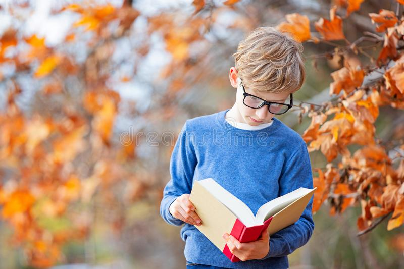 Kid at fall royalty free stock image