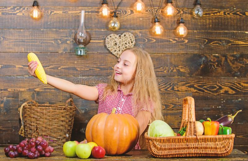 Kid farmer with harvest wooden background. Child little girl enjoy farm life. Grow your own organic food. Organic. Gardening. Harvest festival concept. Girl kid royalty free stock photos