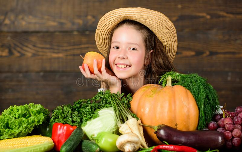 Kid farmer with harvest wooden background. Family farm festival concept. Traditional autumnal fest. Farm activities for. Kids. Girl kid farm market with fall royalty free stock photo
