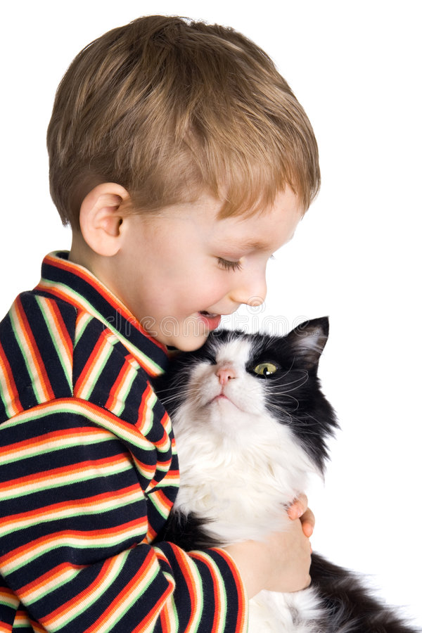 Kid with a fluffy cat. Loving kid with a fluffy cat stock photos