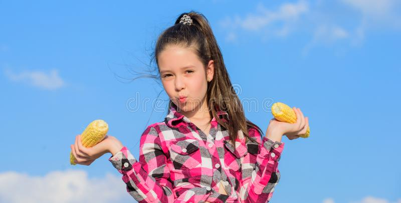 Kid girl hold yellow corn cob on sky background. Girl cheerful hold ripe corns. Harvesting and fun. Kids love corn food royalty free stock images
