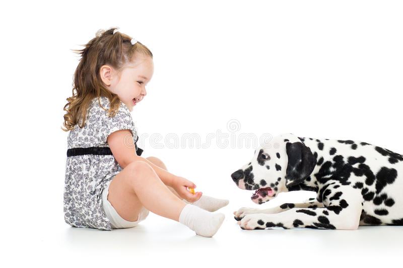 Kid girl playing puppy dog. Isolated on white stock images