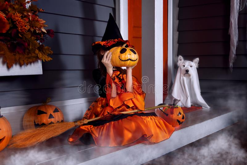 Kid in halloween witch costume ready for halloween. Young funny girl child kid in halloween orange costume playing outdoor with spooky lantern jack pumpkins with stock photo