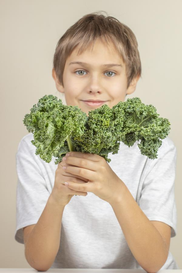 Kid with healthy vegetables. Boy holding fresh kale leaves stock photos