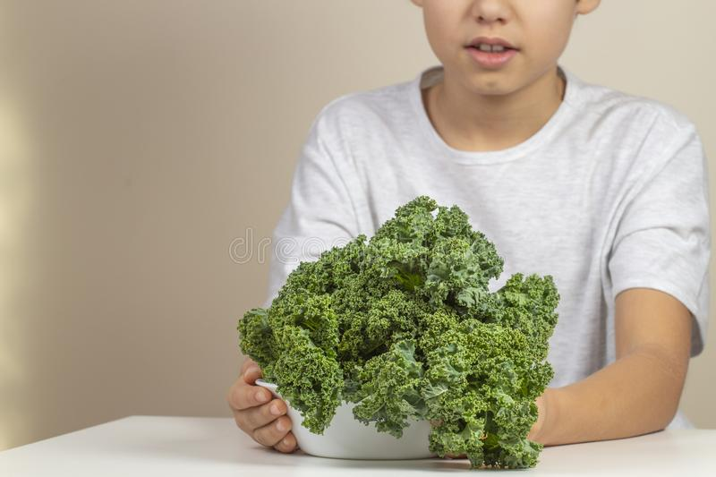 Kid with healthy vegetables. Boy holding plate of fresh kale leaves stock photos