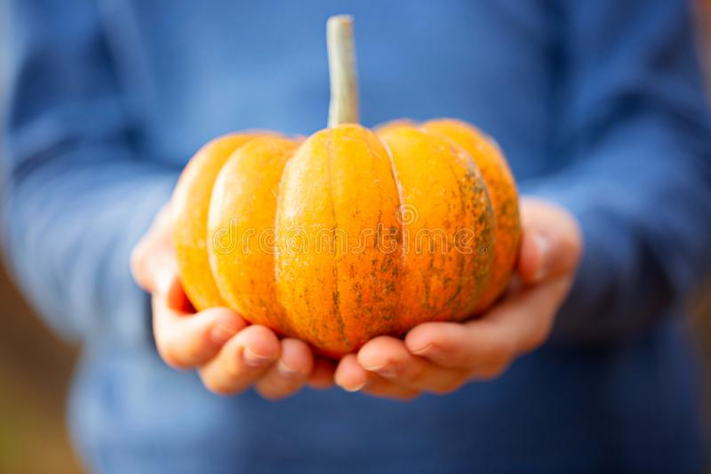 Kid holding pumpkin stock images