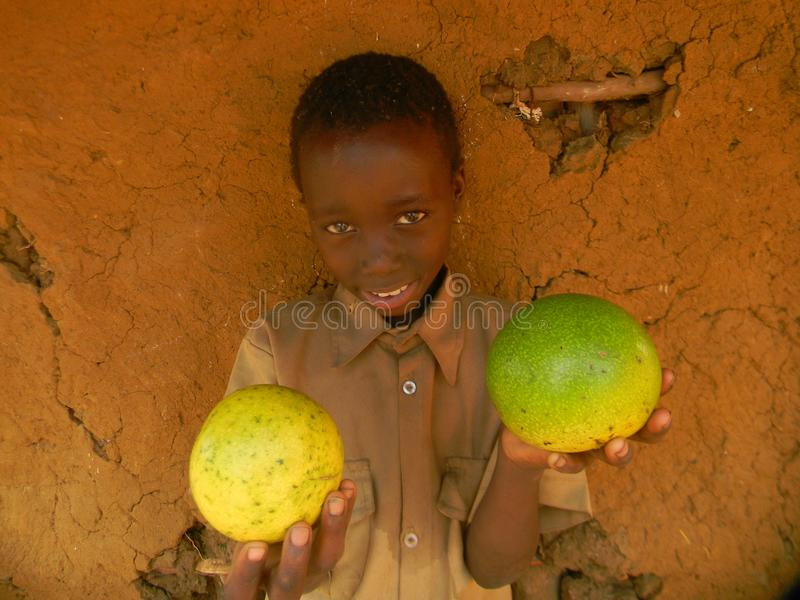 Kid holding wild monkey oranges in hands. Chibero,Zimbabwe,21 September 2017. Young African primary school kid holding monkey oranges in his hands whilst selling stock photo
