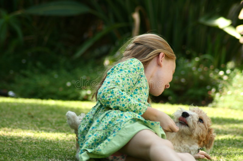 Kid playing with puppy. A white caucasian blond girl playing with her puppy royalty free stock photos