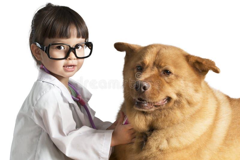 Kid playing veterinarian with dog. Kid wearing veterinarian outfit playing with dog stock images