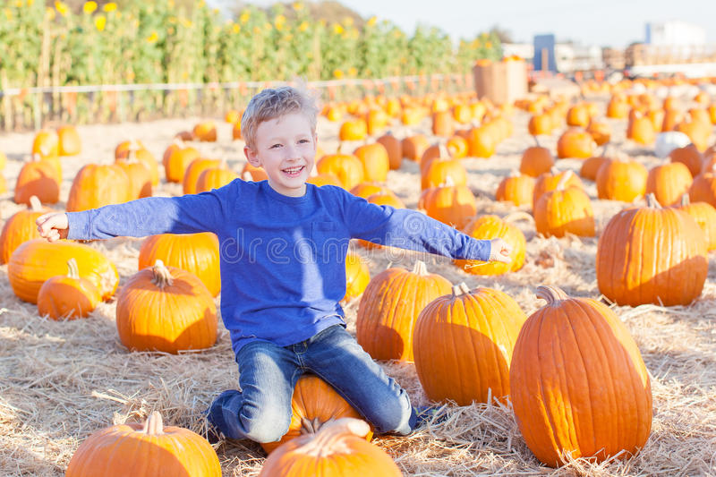 Download Kid at pumpkin patch stock photo. Image of outside, caucasian - 61247656