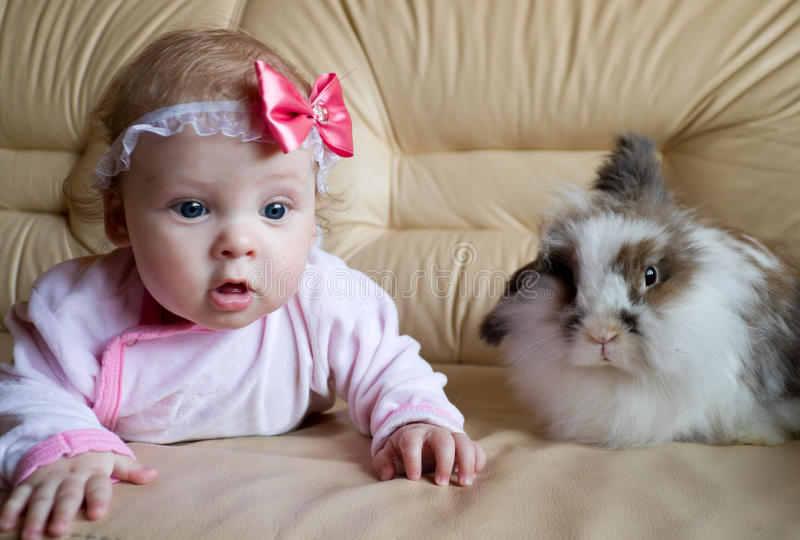 The kid and the rabbit. Baby playing with house bunny royalty free stock photos