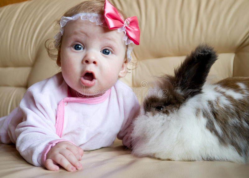 The kid and the rabbit. Baby playing with house bunny stock images