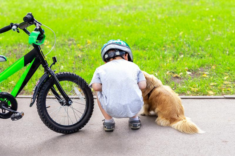 Kid riding bicycle in city park and stopped to meet cute little dog. Child having fun playing with pet friend outdoors. Children royalty free stock photo