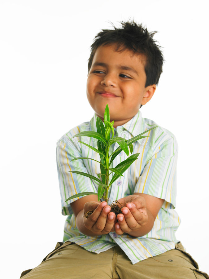 Kid with sapling. Asian kid of indian origin with sapling royalty free stock photos