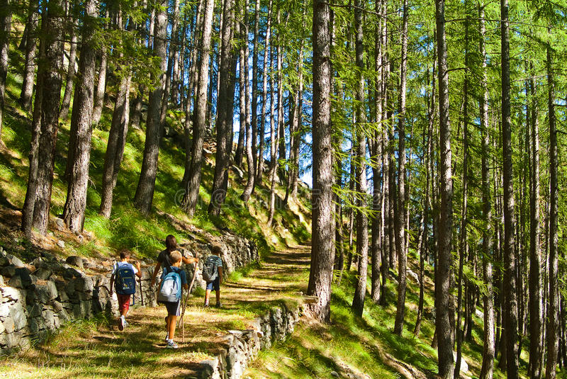 Download Kid walking in mountain stock image. Image of vacation - 26389447