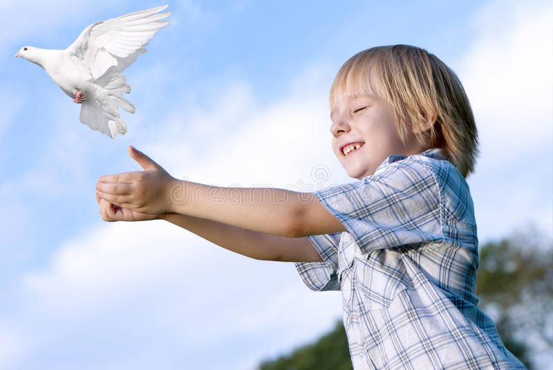 The kid and white pigeon. Little boy releasing a white pigeon in the sky