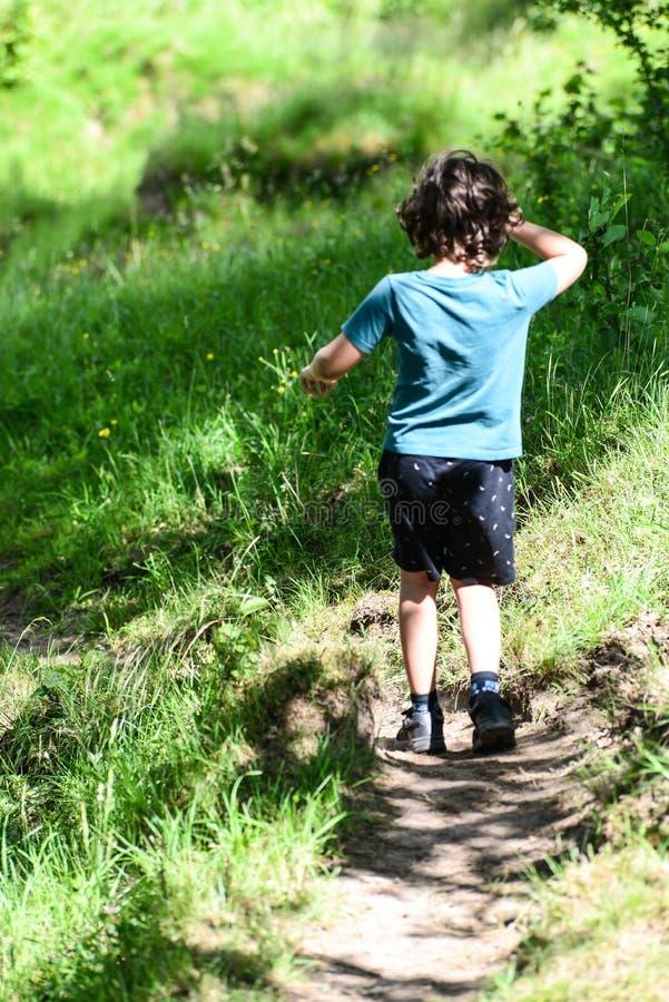 Kide obtém o passeio triste afastado na madeira imagens de stock