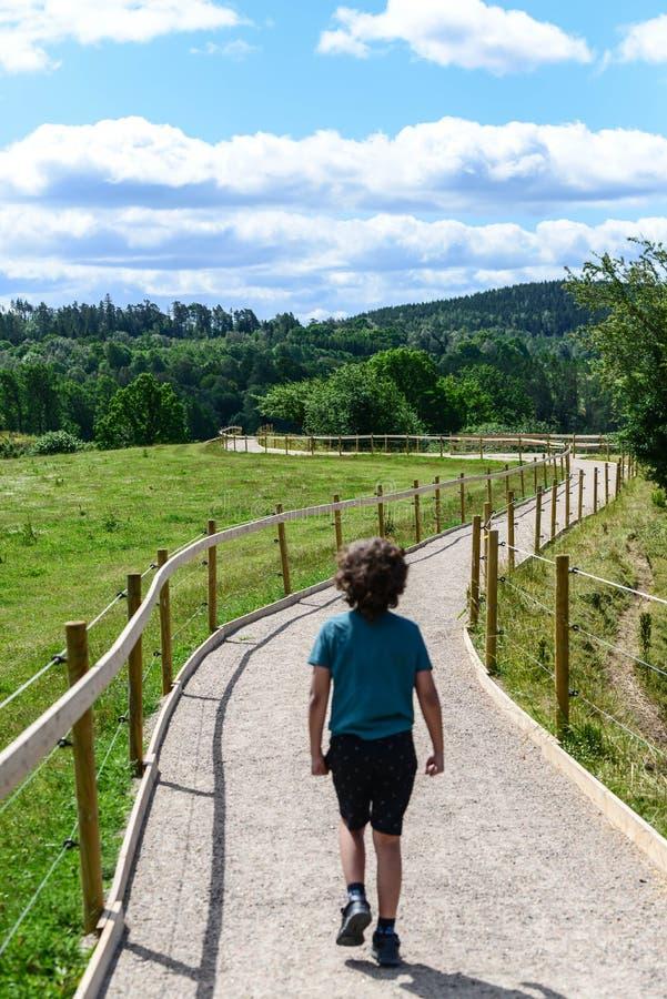 Kide obtém o passeio triste afastado na madeira fotografia de stock