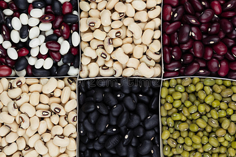 Kidney beans background, different kind haricot - red, black, white, mung in square cells closeup top view. Healthy protein food stock image