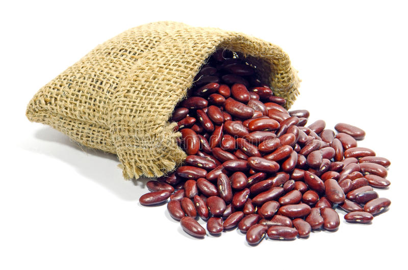 Kidney Beans. stock photography