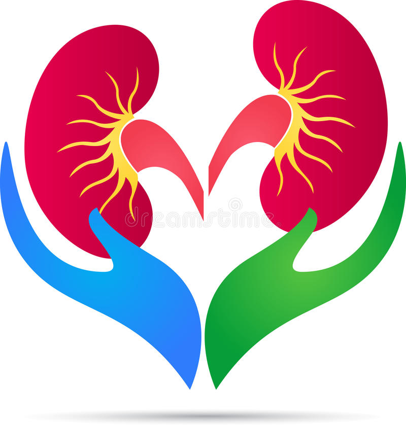 Free Kidney Care Logo Stock Photo - 52096310
