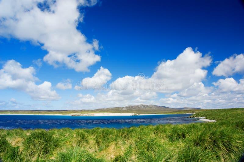 Download Kidney Island stock photo. Image of ocean, islands, landscape - 8090570