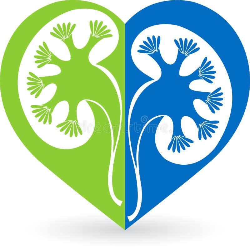 Kidney logo. Illustration art of a love shape kidney logo with isolated background