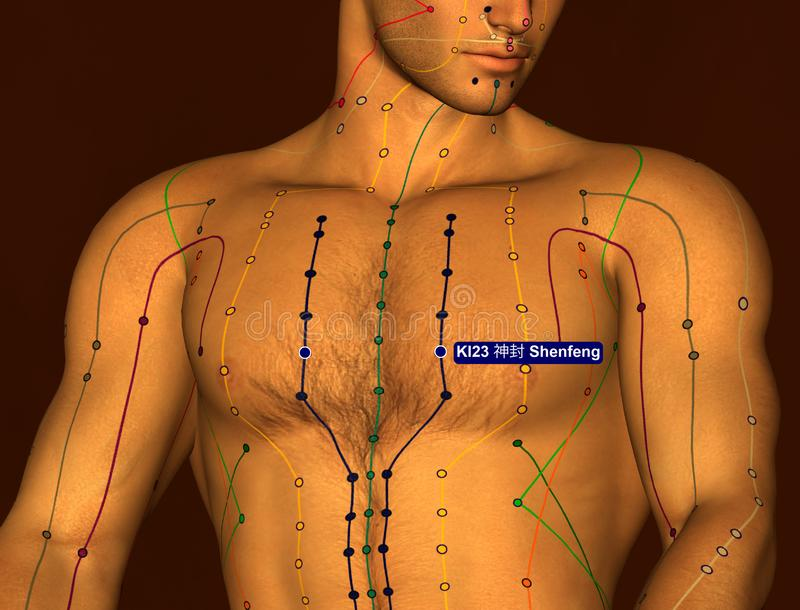 Acupuncture Point KI23 Shenfeng, 3D Illustration, Brown Background royalty free stock images
