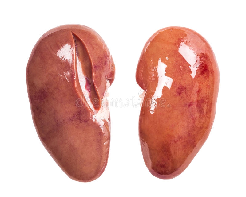 Kidney of pork royalty free stock image
