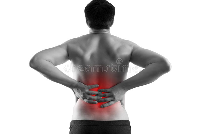 Kidney stones, pain in a man`s body isolated on white background, chronic diseases of the urinary system concept. Painful area highlighted in red royalty free stock photos