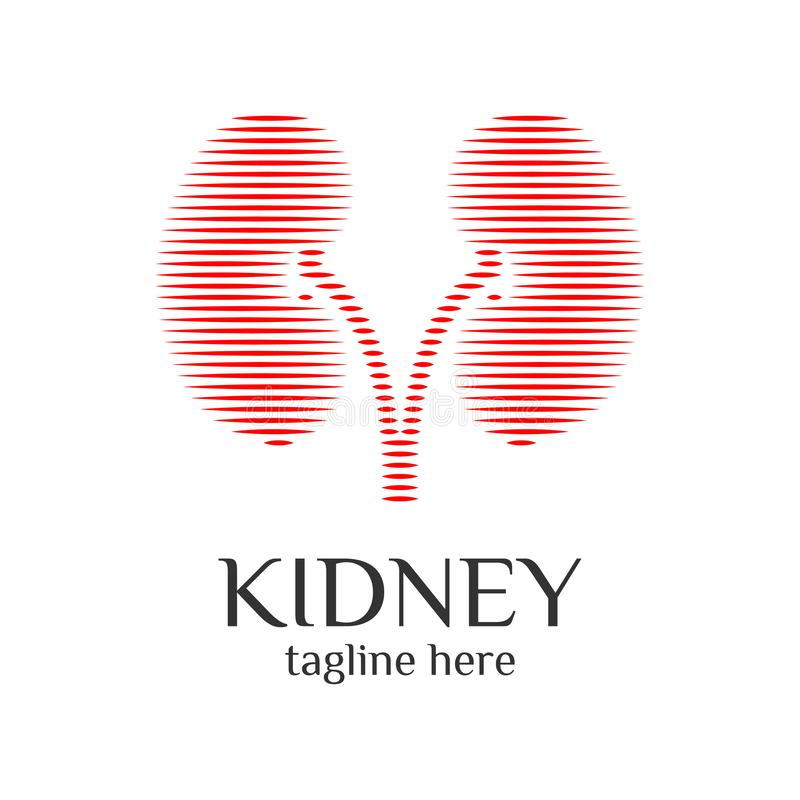 Kidney Urology Care logo ontwerpt vector, Human Niers Pictogram Medical Hospital Clinic Symbool royalty-vrije illustratie