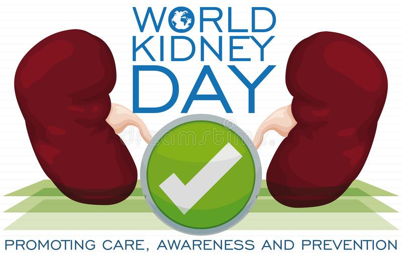 Kidneys with Good Health Ready to Commemorate World Kidney Day, Vector Illustration royalty free illustration