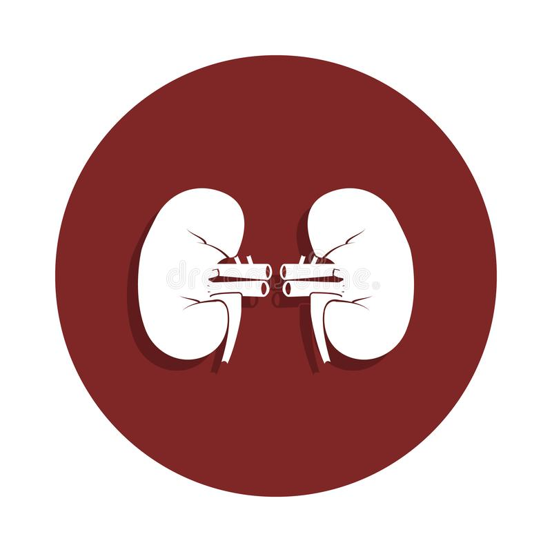 kidneys icon in badge style. One of organ collection icon can be used for UI, UX royalty free illustration