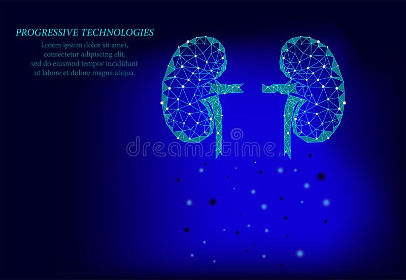Kidneys internal organ men silhouette 3d geometric model. Urology system medicine treatment. Future science technology.Blue. Triangles polygonal 3D render shape stock illustration