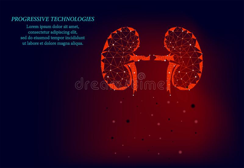 Kidneys internal organ men silhouette 3d geometric model. Urology system medicine treatment. Future science technology.Red. Triangles polygonal 3D render shape royalty free illustration