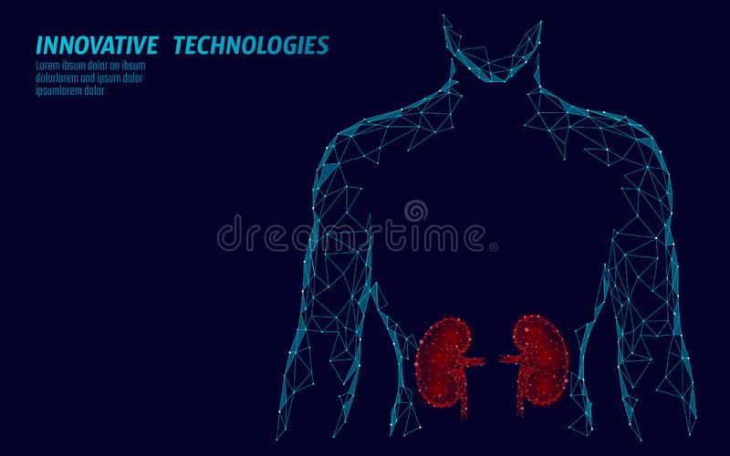Kidneys internal organ men silhouette 3d low poly geometric model. Urology system medicine treatment. Future science. Technology polygonal geometric wire mesh royalty free illustration