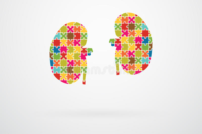 Kidneys Jigsaw Puzzle. Pieces Abstract royalty free illustration