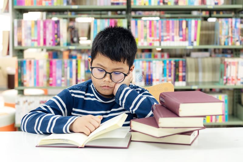 Kids asian boy reading books for education and go to school in library royalty free stock images