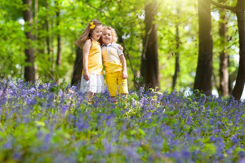 Kids in bluebell woods. Children play in park royalty free stock images