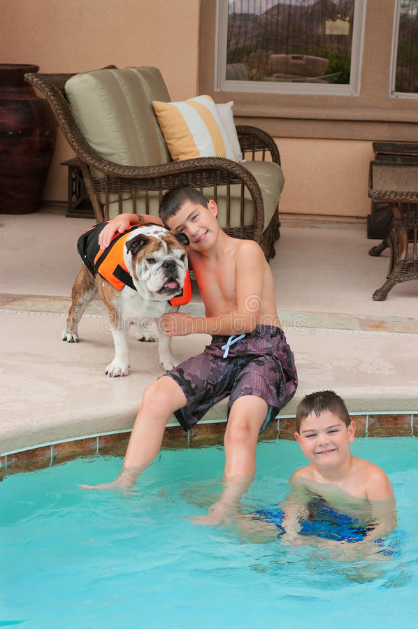 Download Kids and Bulldog stock photo. Image of brother, life - 20382602