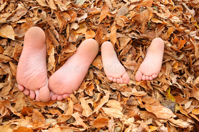 Kids buried in fall leaves stock images
