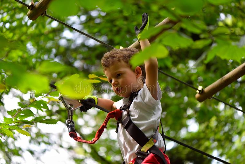 Kids climbing in adventure park. Boy enjoys climbing in the ropes course adventure. stock photo