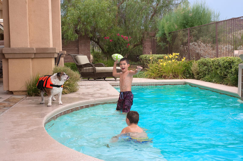 Kids and Dogs royalty free stock images